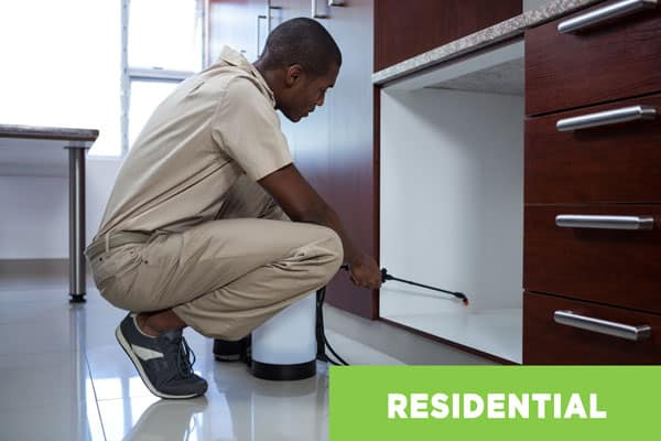 Residential Pest Control Technician Working